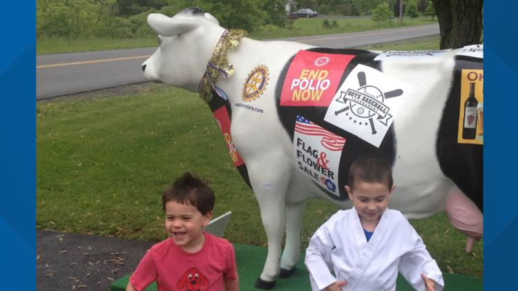 Decorative cow stolen from a home in Elba, sheriff's office looking for it