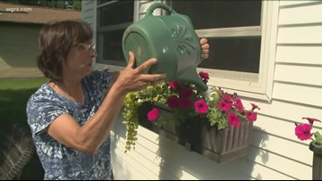 2 the Garden: How to maintain a window flower box