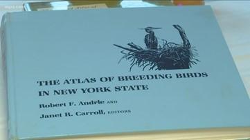 2 the Outdoors: New York State Breeding Bird Atlas