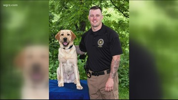 Bomb Detection Dog Certified For ECSO