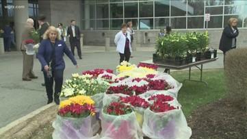 Flowers from Hamburg farm donated to Western New York hospitals