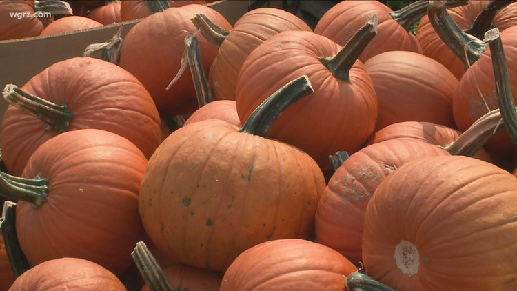 Erie County Fall Fest set for this Saturday at Como Lake Park in Lancaster