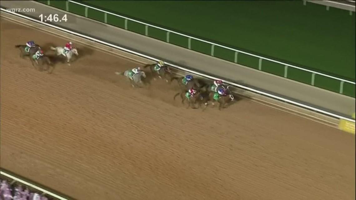 Horse Racing Doping Scadal