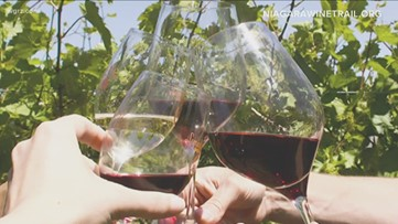 Niagara Wine Trail encourages people to raise a glass, celebrate local businesses during virtual happy hour event