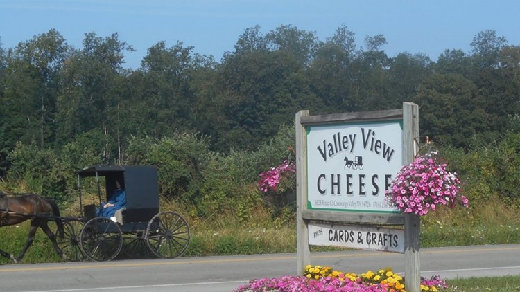 Celebrating WNY: Valley View Cheese