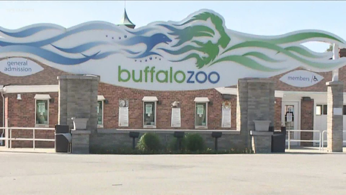 Expanding Capacity For Museums And Zoo