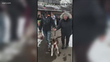 Dog adopter honored at SPCA fundraiser