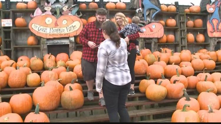 September 14 - The Great Pumpkin Farm