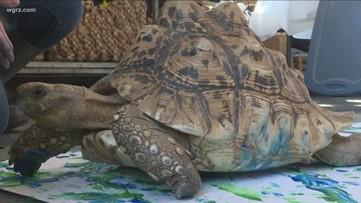 2 the Outdoors: Animal artists raising funds, awareness