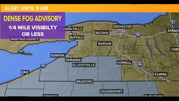 Dense Fog Advisories issued for parts of the Southern Tier