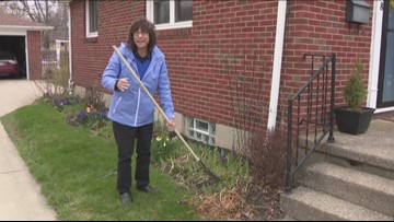 2 the Garden: It's time to start cleaning out our beds