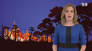Climate impact on wildfires
