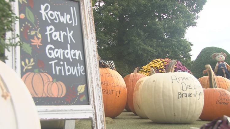 Good Neighbors: West Seneca cancer survivor has pumpkin tribute garden and prize raffle for Roswell Park
