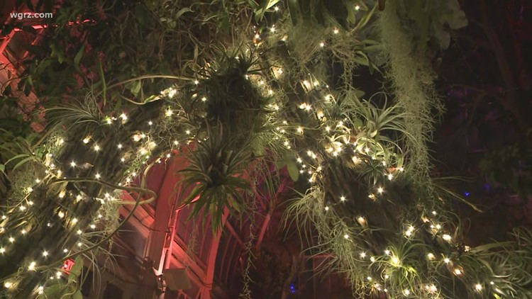 Gardens After Dark: Autumn Twist is now open at Buffalo and Erie County Botanical Gardens