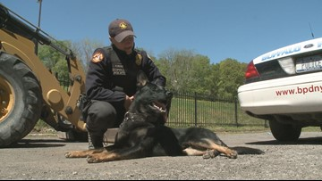 K-9 Joins Buffalo Police Force Thanks to New Marathon Event
