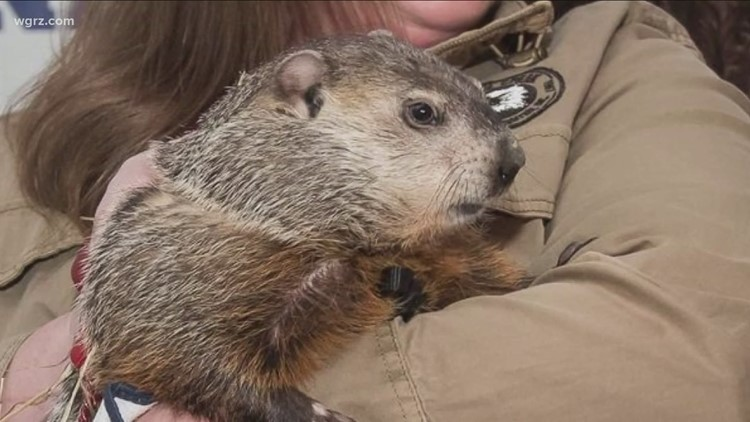Dunkirk Dave doesn't agree with Punxsutawney Phil
