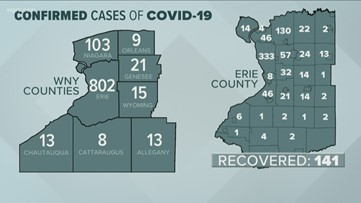 Highest concentration of cases in Erie County is the City of Buffalo