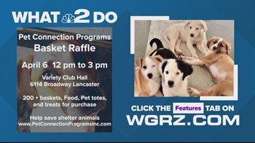 Pet Connection Programs Basket Raffle
