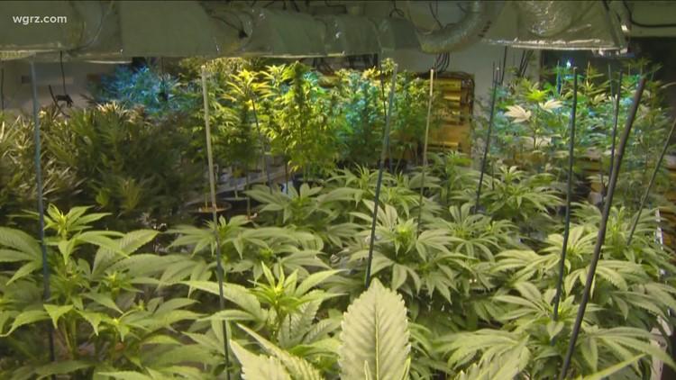 Peoples-Stokes: Passage of recreational marijuana looking very likely