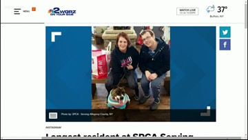 Sissy adopted after 1300 days at SPCA