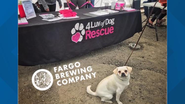 Fargo Brewing Company adoption event